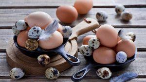Сколько грамм белка в одном яйце