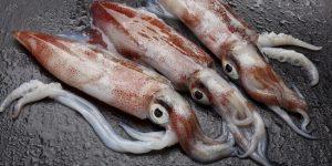 Сколько нужно варить кальмары