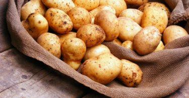 Как правильно варить картофель?